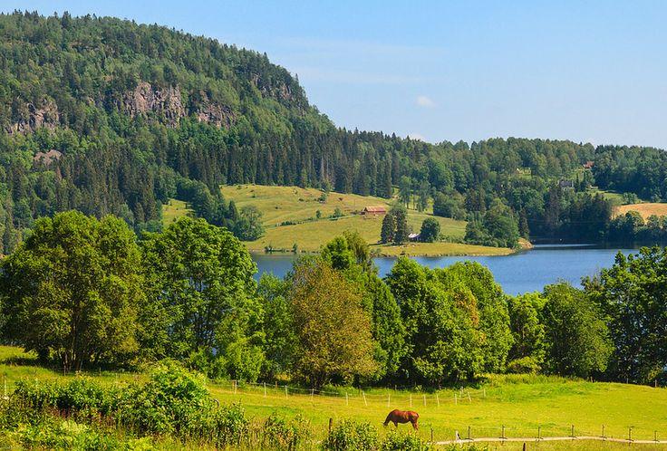 Sommer i Asker | por mariano iannuzzi