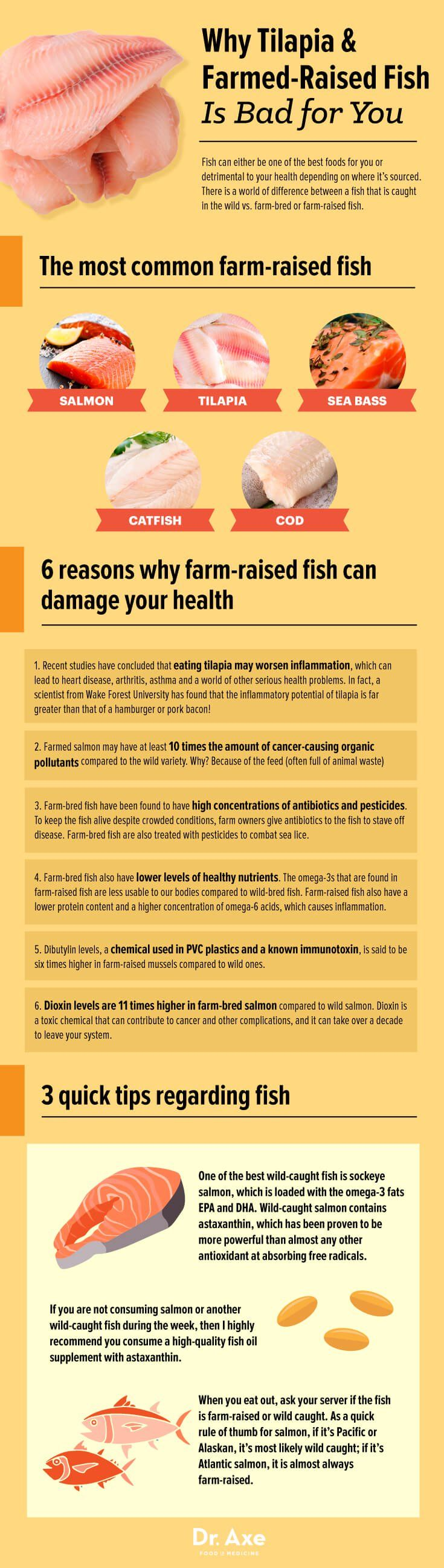 Infographic on farmed fish - Dr. Axe