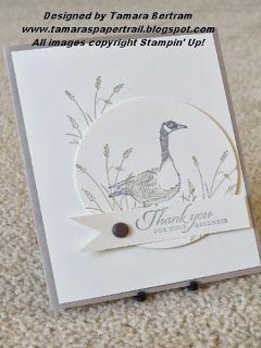 Handmade Birthday Card; Masculine Card; Wetlands; Stampin' Up!; Tamara's Paper Trail