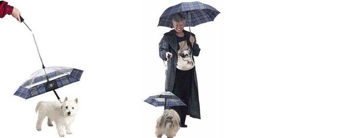 Umbrella Dog Leash