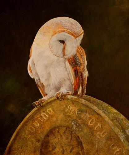 Barn Owl on Headstone by John Halbert