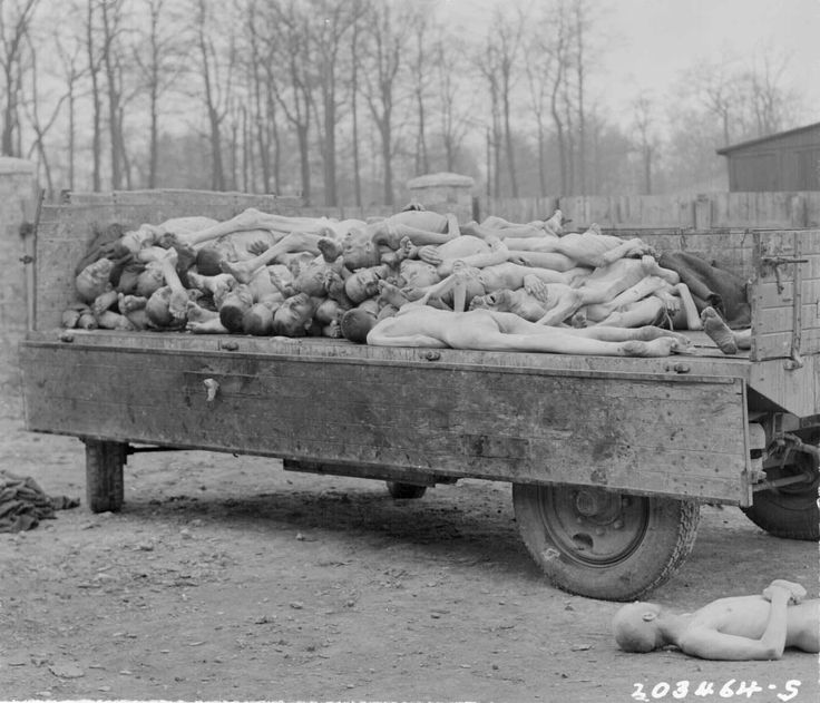 A truck load of bodies of prisoners of the Nazis, in the Buchenwald concentration camp at Weimar, Germany. The bodies were about to be disposed of by burning when the camp was captured by troops of the 3rd U.S. Army, April 14, 1945 (NARA Photo).