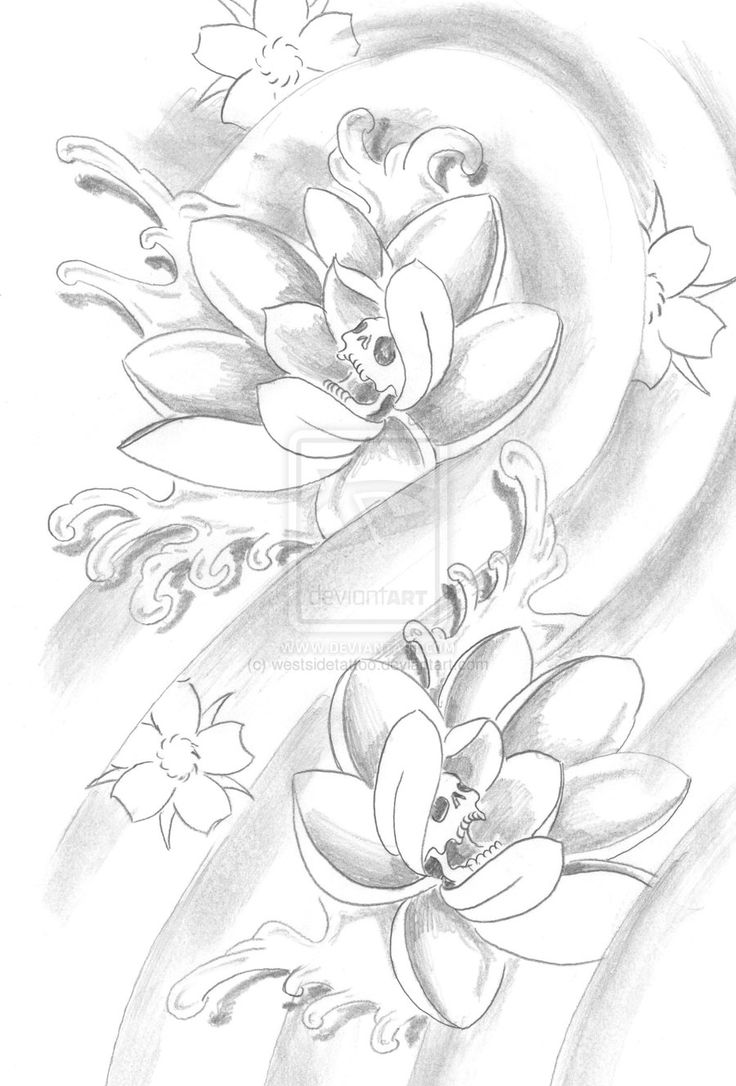 lotus flower drawing sketchDrawings Sketch Of Lotus Drawing and Coloring for Kids 2bx9qKQT