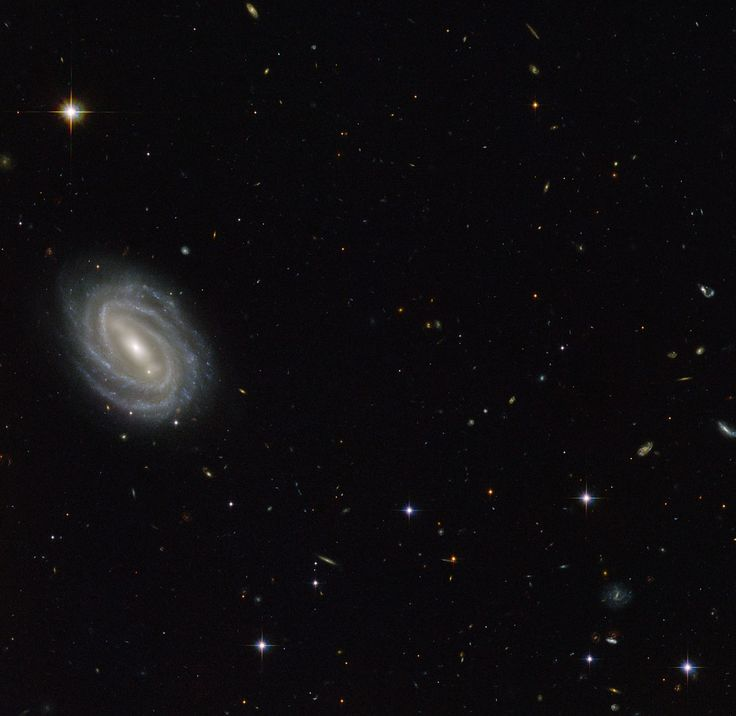 This new NASA/ESA Hubble Space Telescope image shows a beautiful spiral galaxy known as PGC 54493, located in the constellation of Serpens (The Serpent). This galaxy is part of a galaxy cluster that has been studied by astronomers exploring an intriguing phenomenon known as weak gravitational lensing.