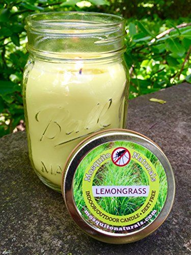 Natural Mosquito Repellent Candle - Deet Free - 88 Hour Burn - Naturally Repels Insects with Essential Oils - Indoor Outdoor - Decorative Ball Mason Jar - CITRONELLA SOY MADE IN USA ** Read more reviews of the product by visiting the link on the image.