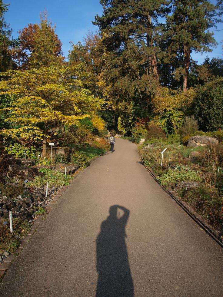 Botanischer Garten,Zurich,Switzerland