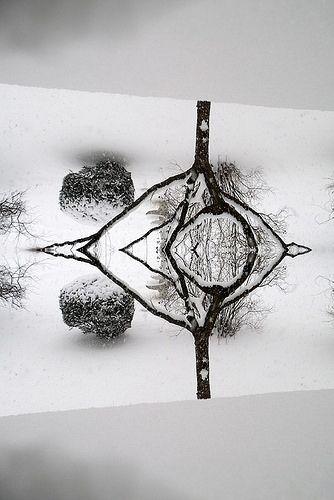 Snow eye