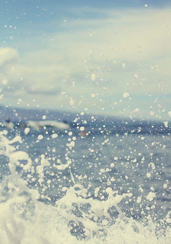 the salty sea