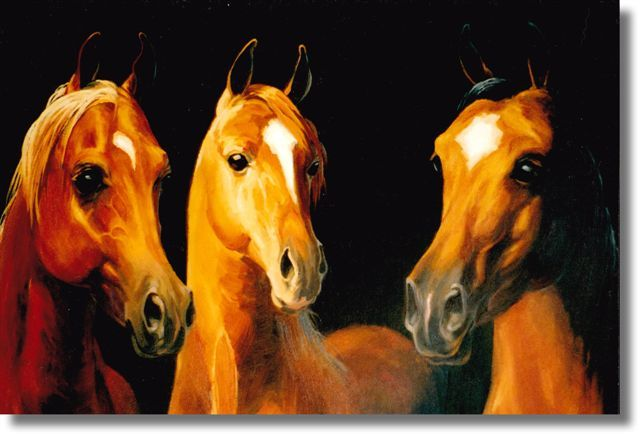 Starry Faces - Hearts of Gold - Original Oil Painting of Horses for Sale by Pat Dickinson