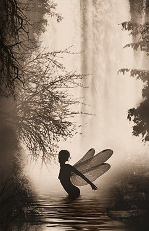 """""""The moment you doubt whether you can fly, you cease for ever to be able to do it.""""   ― J.M. Barrie, Peter Pan"""