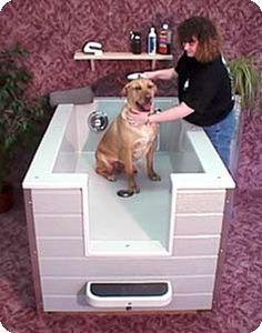 34 Best Pet Bath Ideas For Basement Images On Pinterest