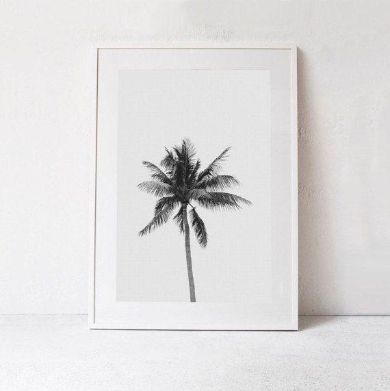 Schwarz/weiß Fotografie - Palm Tree Poster