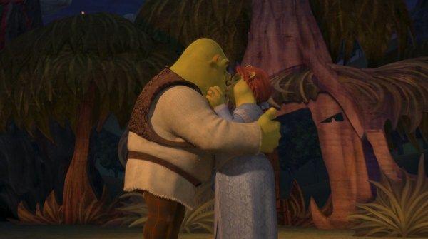 Pin On Shrek E Princesa Fiona