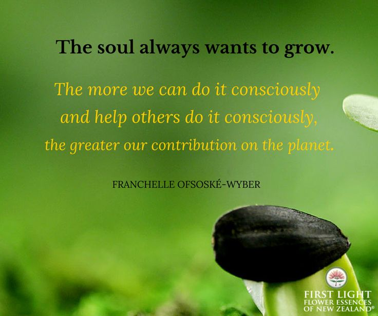 The soul always wants to grow. The more we can do it consciously and help others do it consciously, the greater our contribution on the planet.