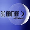 Big Brother after dark on showtime 2
