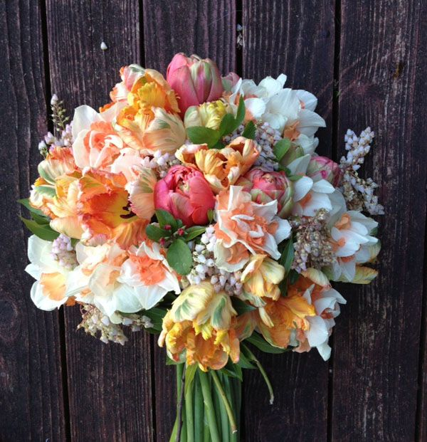Peach and pink parrot tulips, daffodils and pieris japonica - gorgeous!