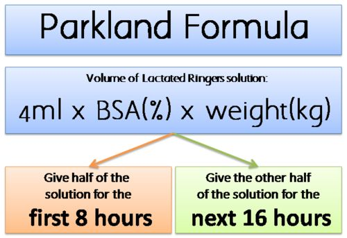 Burns  4ml/kg xTBSA/24 hours 1/2 in first 8, then 1/4 in 8 and 1/4 in 8