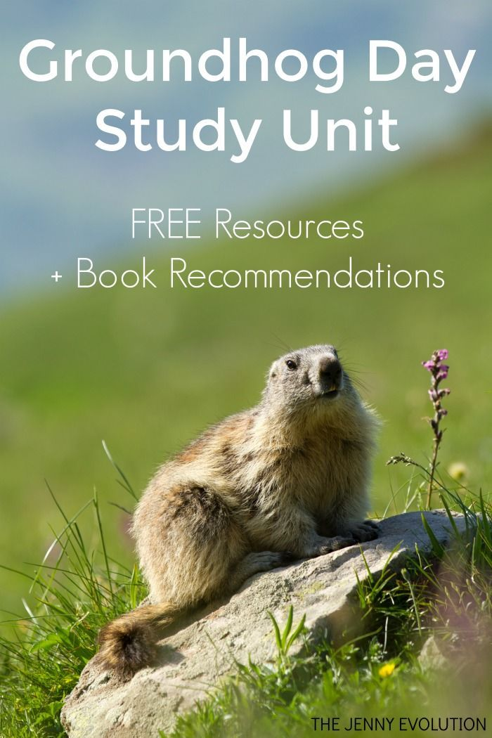 FREE Groundhog Day Study Unit Resources and Ideas, PLUS Groundhog Day children's picture book recommendations.