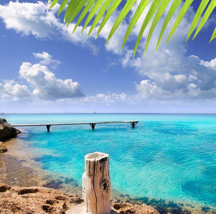 Vacaciones, playa, sol y mar en Mallorca. Grandes ofertas de vuelo + hotel http://vuelo-hotel.rumbo.es/vg1/hoteles.action