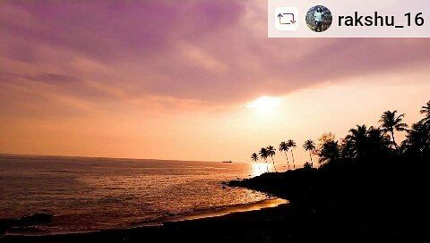 Our fellow traveller soaking up the beauty!  #Rensta #Repost: @rakshu_16 via @renstapp   WATCH MORE SUNSETS THAN NETFLIX  #travelgoals #photography #landscapephotography #feelgoodphoto #landscaping #sky #sunset #sunsetlovers #instapict #coconuttree #sea #hills #instagram #instagrammers #picoftheday #instagood #instabest #traveller #indianphotography #konkan #likeforlikes #wanderlust #india #nikon #nikond3300 #igers