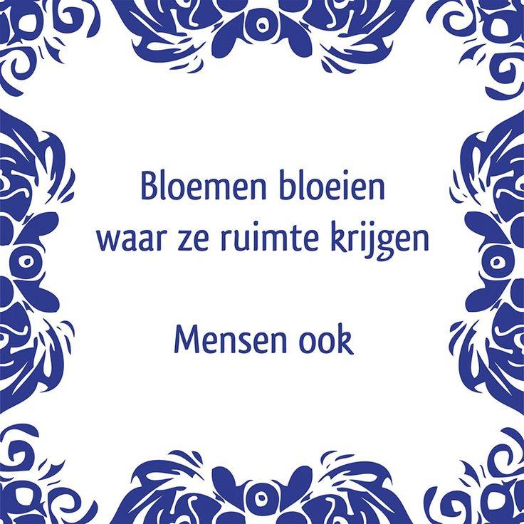 Tegeltjeswijsheid.nl - een uniek presentje - Bloemen bloeien waar ze ruimte krijgen