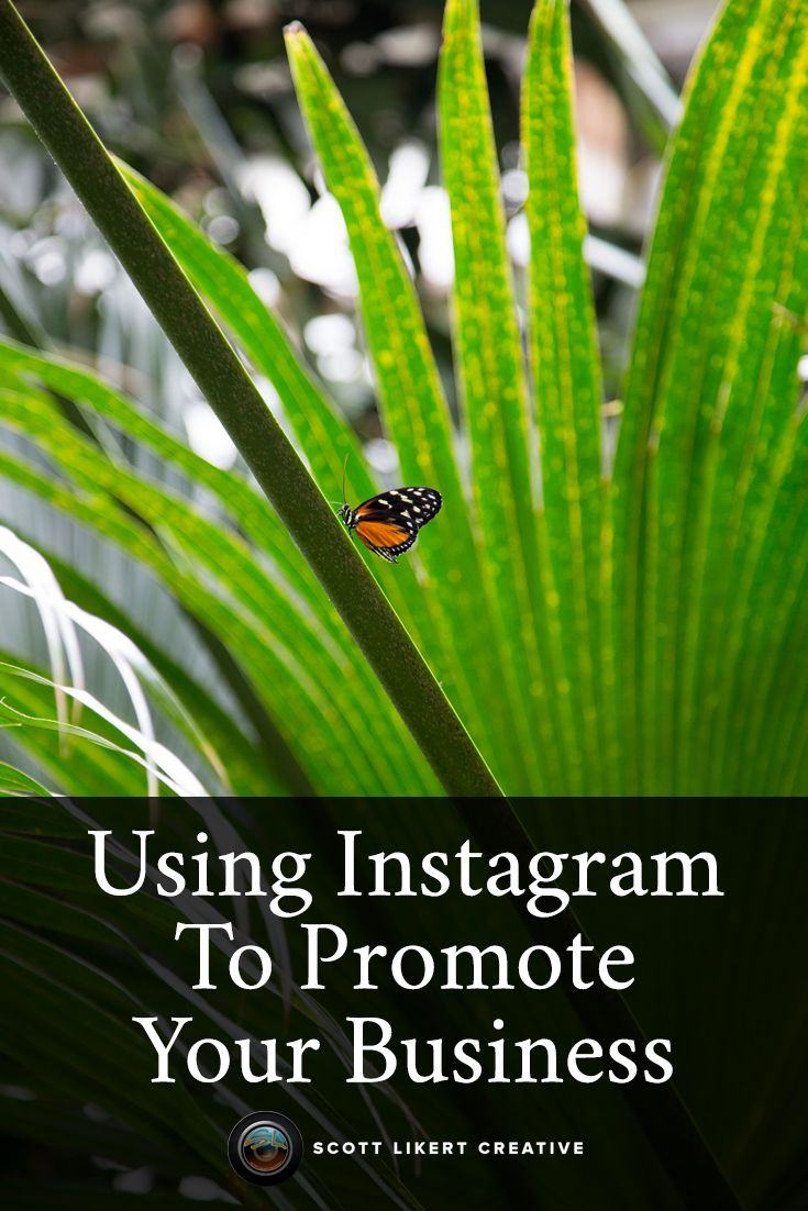 Using Instagram to promote your business on Scott Likert Creative.