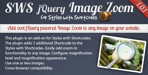 Image Zoom add-on for Styles with Shortcodes