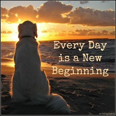 every day is a new beginning   just saying...   Pinterest