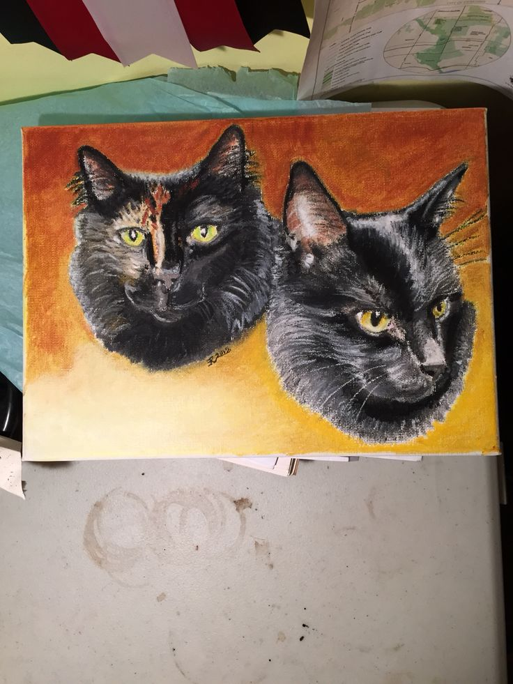 Cats commission 2015