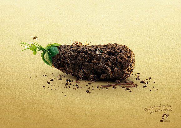 "Bio Suisse: Eggplant ""The best soil makes the best vegetables."" Advertising Agency: Leo Burnett, Zurich, Switzerland Executive Creative Director: Johannes Raggio Creative Director: Pablo Schencke Copywriter: Martin Arnold Art Director: Pedro Moosmann Photographer: Rico Rosenberger"