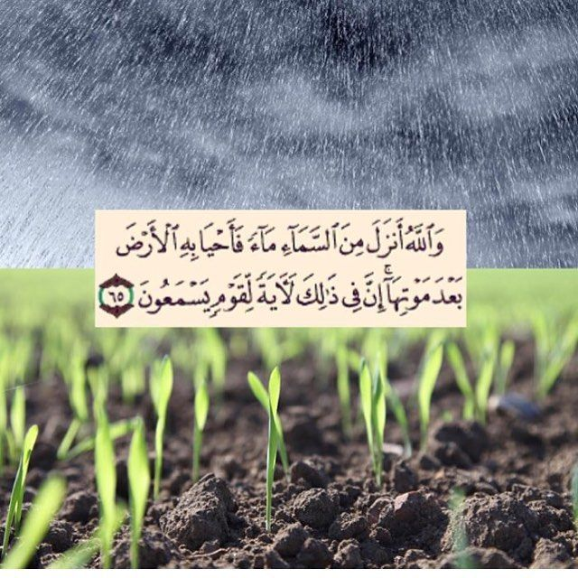 And Allah sends water down from the sky, then He revives the earth with it after its death. Surely that is a sign for people who listen Quran Nahl :65