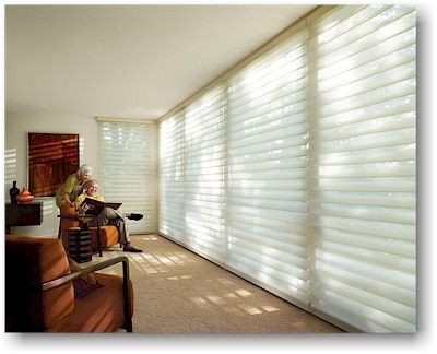 Hunter Douglas Silhouette shades to replace the mini blinds