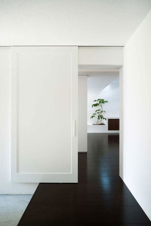 Sliding door and dark floors use of black and white decor | chic black white hallway | doors | green plant