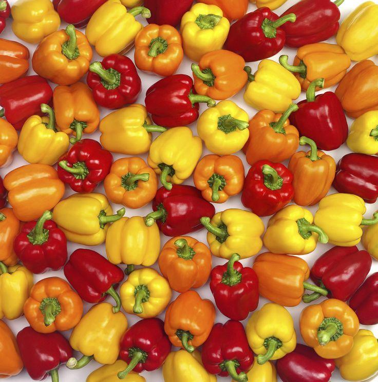 Un' estate rossa di peperoni