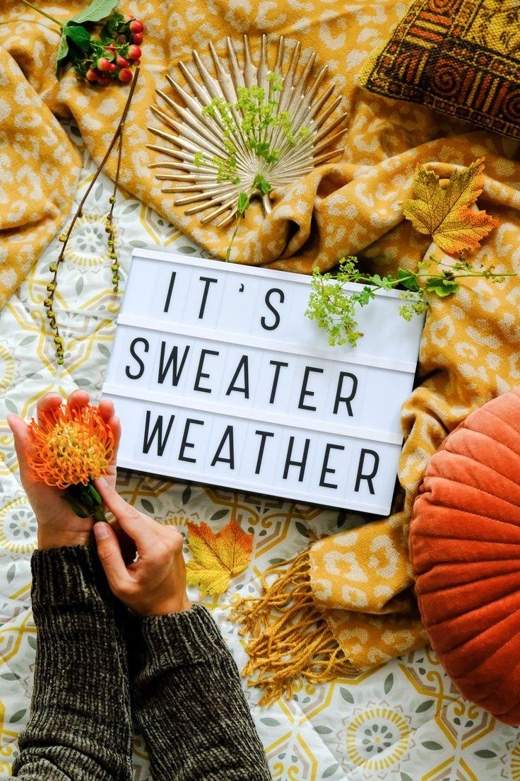 Citas de otoño - 30 textos de otoño para los meses de otoño 10 citas de otoño. Textos de otoño para la caja de luz, el tablero de letras, el banner de palabras o la pizarra. Tek ...