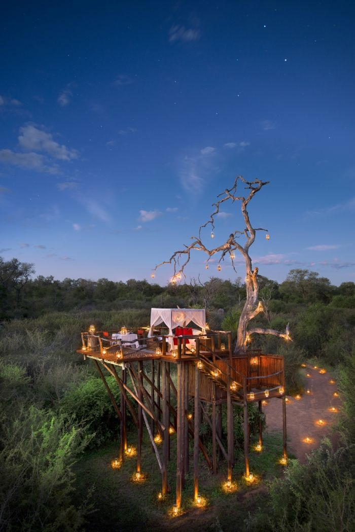 This tree house at Lion Sands Game Reserve in South Africa has us swooning!