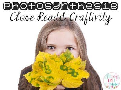 Photosynthesis Craftivity