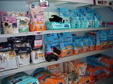 Alimentación para perros y gatos