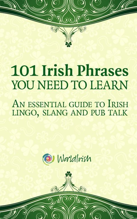 101 Phrases You Need To Know: An essential guide to Irish lingo, slang and pub talk