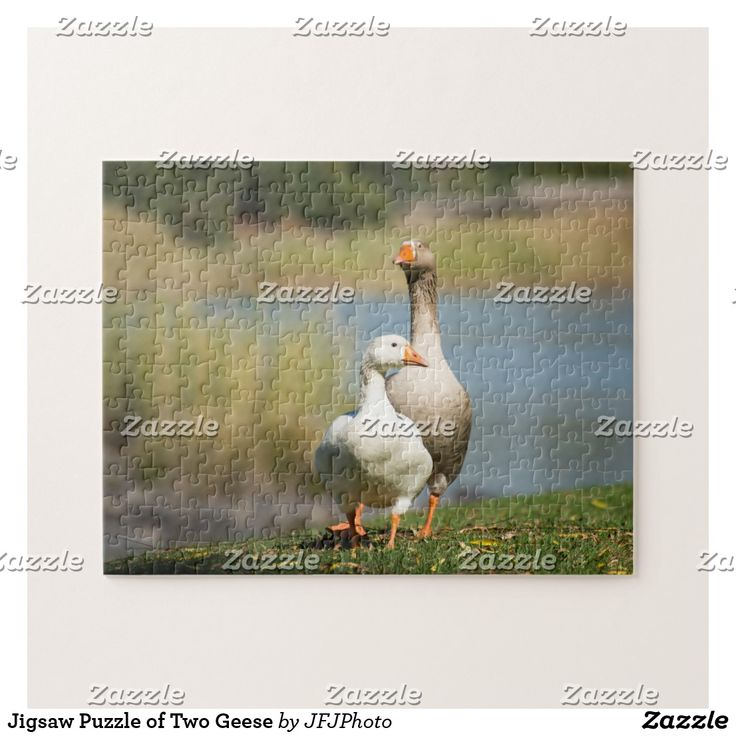 Jigsaw Puzzle of Two Geese