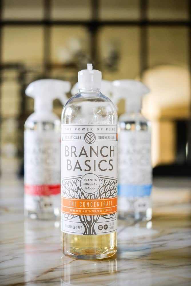 Branch Basics Review Safe Cleaning Products Detox Your Home Foaming Hand Wash