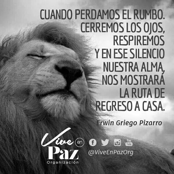 ➡ Compártela y etiqueta a otros #Ego #Espiritu #Presente #Espiritual #Creencia #Paz #PazInterna #Conciencia #Despertar #Amar #Eres #Ser #Interior #Soltar #Fluir #Mente #Vida #ViveEnPaz #LifeCoach #Libre #Confianza  #Paz #Felicidad #Aceptacion #Zen #Espiritual #ViveEnPazOrg #Namaste #Corazon