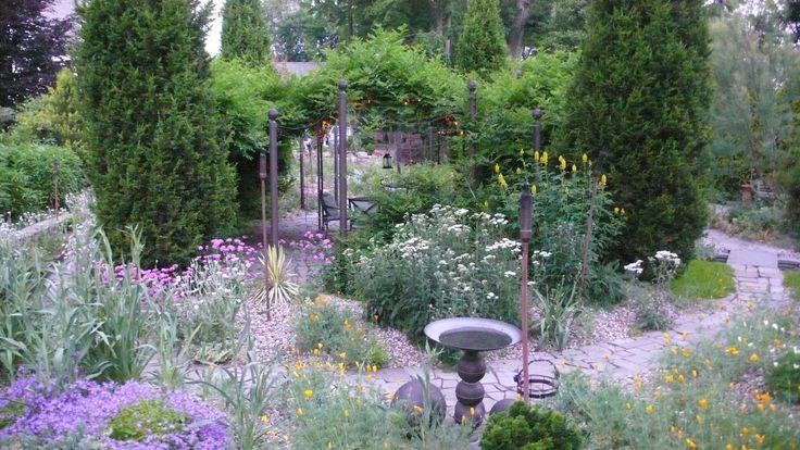 carey.dry_.garden.jpg (1920×1080)