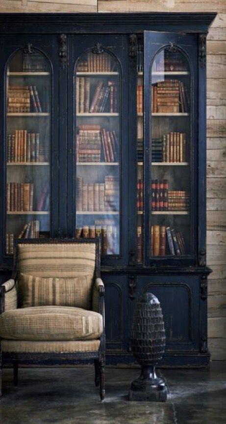 Nice. Some days dark shelving looks best to me, other days white...What to do? 2 Libraries? :)