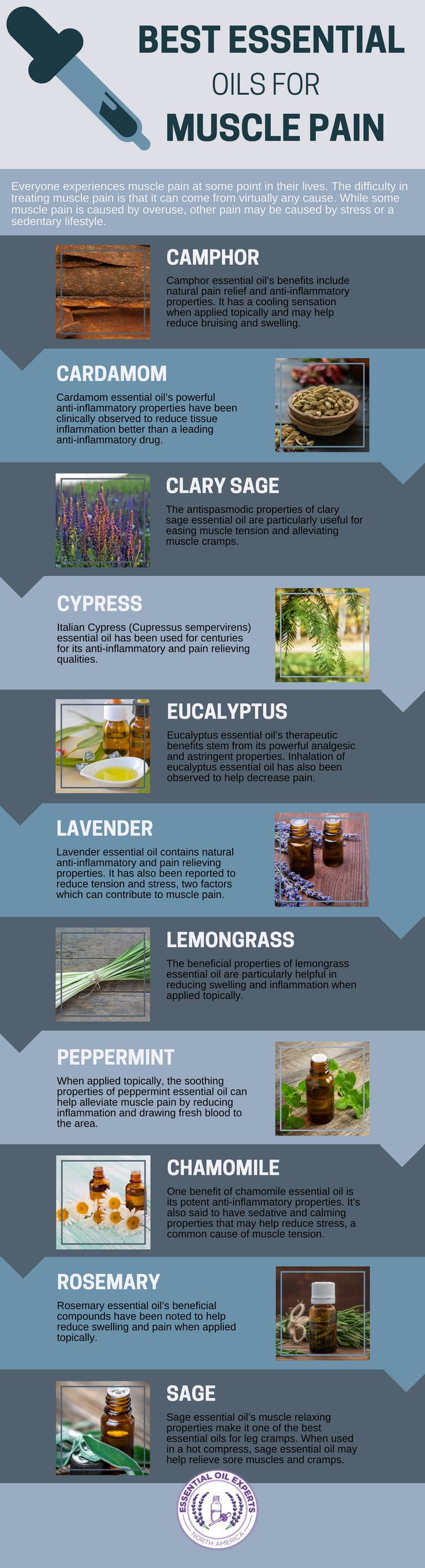 The Best Essential Oils for Muscle Pain