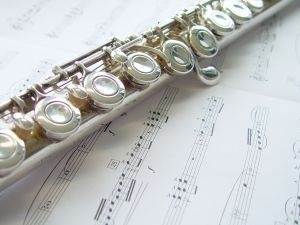 fluteFlute Music, Music Instruments, Favorite Instruments, Heart Sounds, Band Instruments, Band Geek, Heart Flute, Elementary Schools, Heart Keys