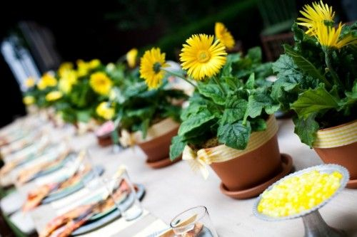 25 best ideas about gerbera daisy centerpiece on pinterest colorful centerpieces gerbera - Terras arrangement ...