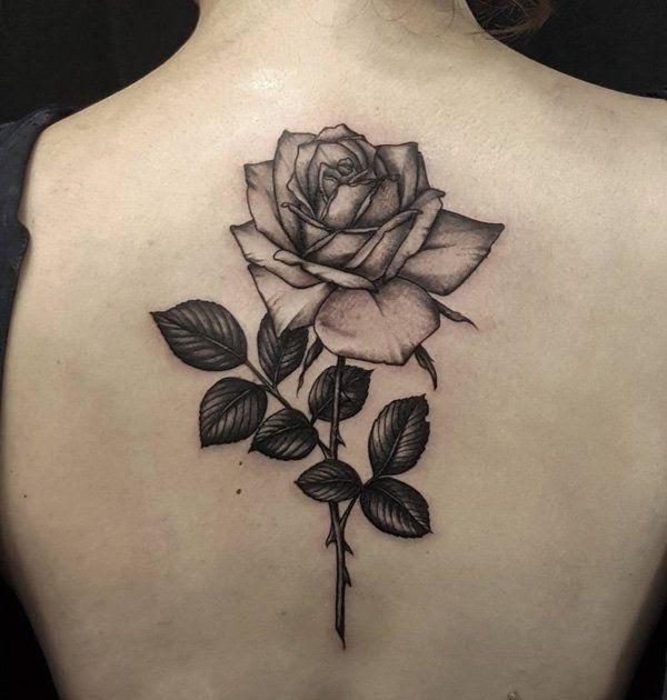 Gambar Tato Mawar Di Tangan 120 Rose Tattoo Designs Yang Berarti Punditschool Net Ini 100 Tato Keren Ada Bunga Mawar Merah D Di 2020 Tato Punggung Tato Tato Lengan