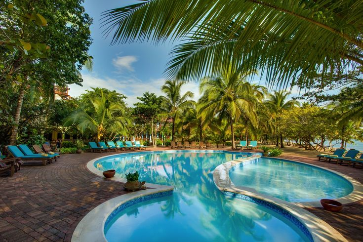 Hamanasi is the ideal Belize resort, combining ecotourism & casual elegance amidst reef & rainforest - we offer all inclusive Belize vacation packages!
