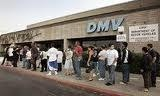 New York DMV Driver License